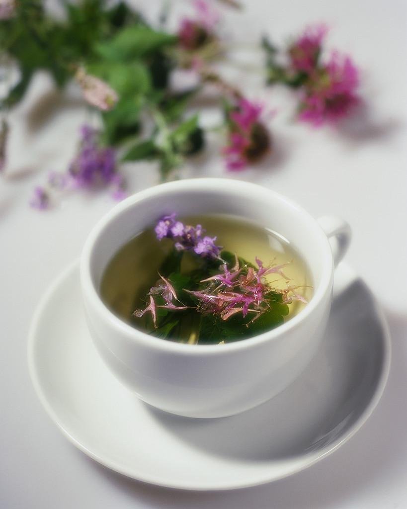 Herbal Tea Healing